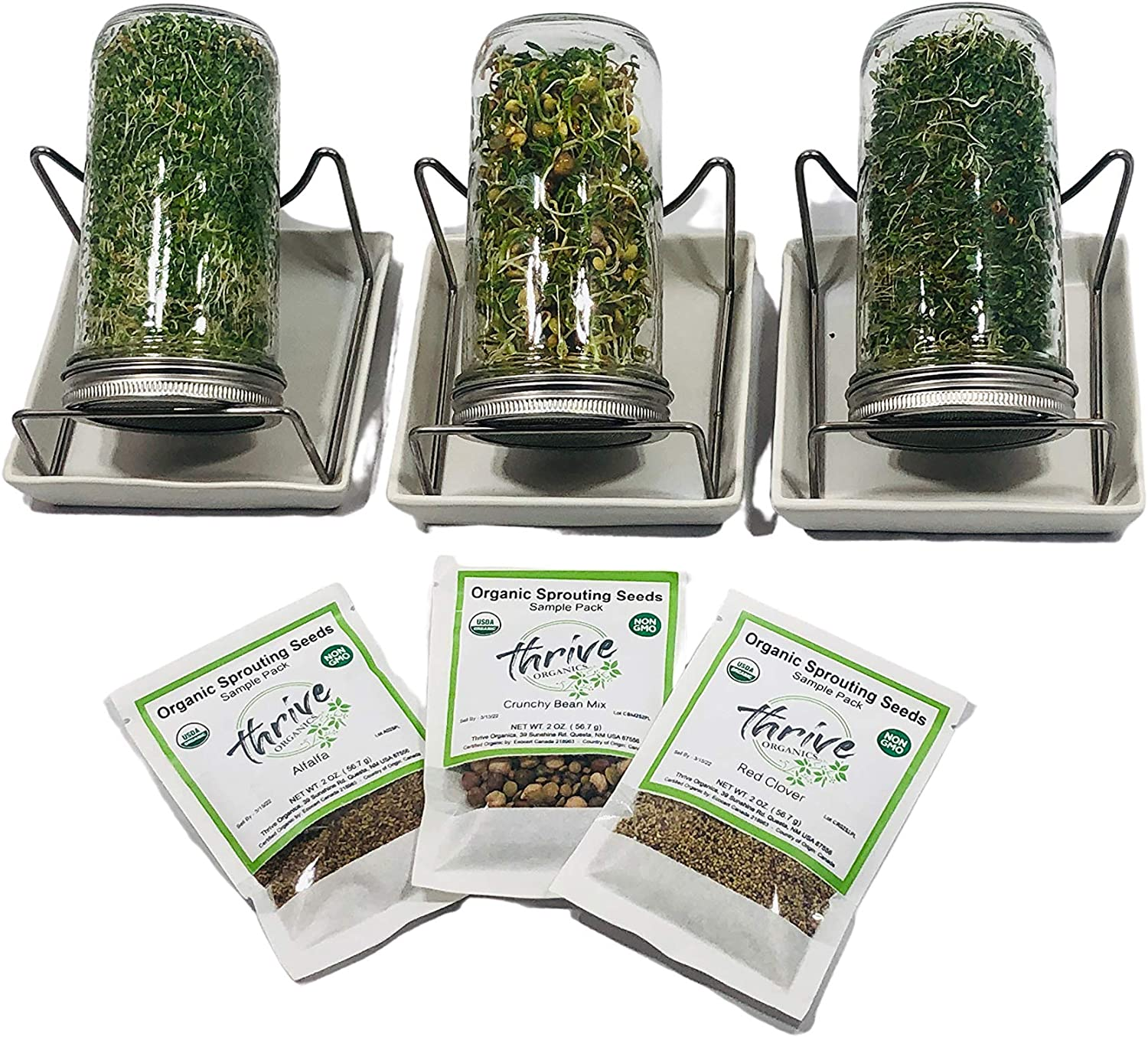 Organic Sprouting Kit with Seeds - Set of 3 Wide Mouth Mason Sprouting Jars with Stainless Steel Lids, Screens & Stands and Ceramic Drip Trays - Complete with Non GMO Organic Sprouting Seeds
