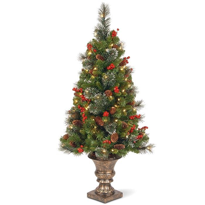 The Best Christmas Tree Porch Decor