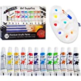 Colorona Acrylic Paint Set with Palette, 3 Brushes and Sponge, 12 ml (12 Colors)