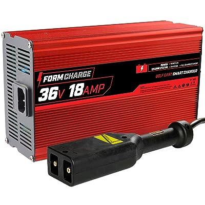 "FORM 18 AMP EZGO TXT Battery Charger for 36 Volt Golf Carts -""D"" style plug: Automotive"