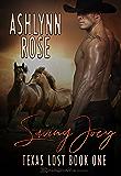 Saving Joey (Texas Lost Book 1)