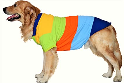 Amazon Com Doxters S32 Dog Polo T Shirts Yellow Green Orange Blue