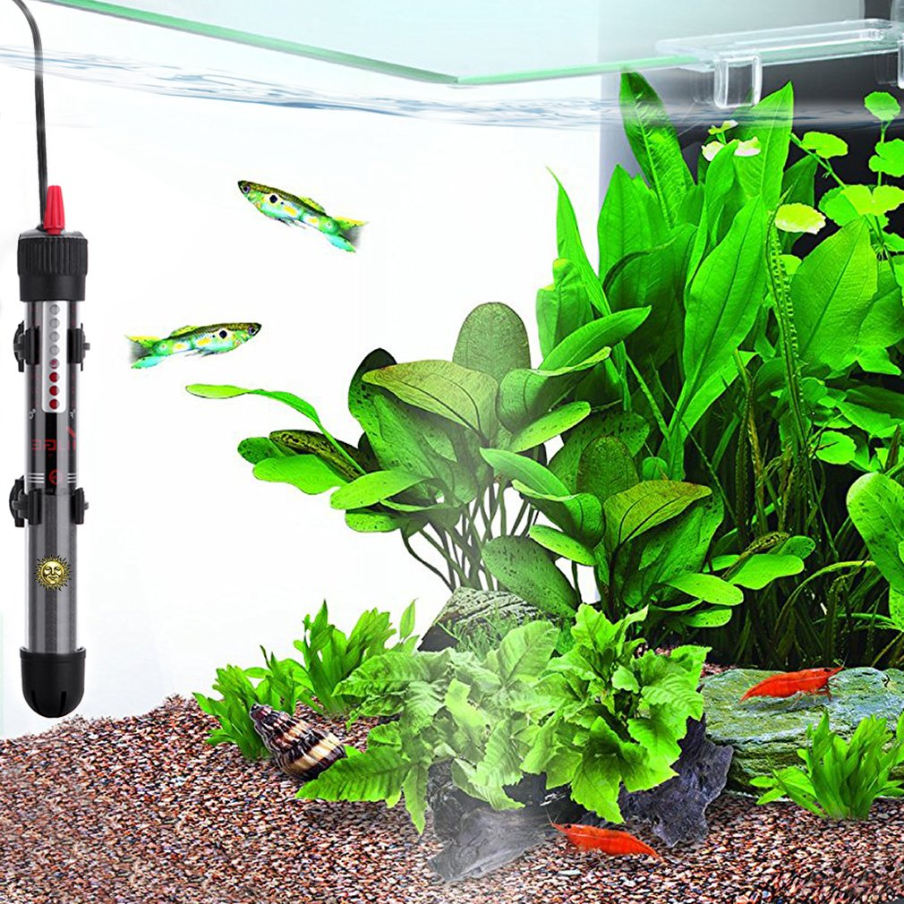 Fish aquarium just dial - Amazon Com Fully Submersible Water Heater For Aquariums By Sungrow Explosion Proof Heating Rod Adjustable Temperature Gauge For Tropical Fish Easily