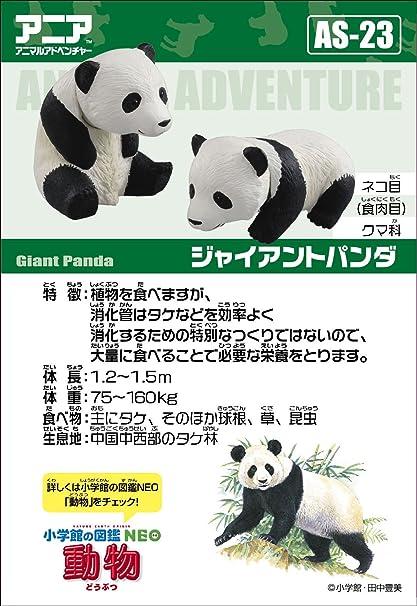 TAKARA TOMY Animal adventure Ania AS-23 Giant Panda Child Japan import NEW