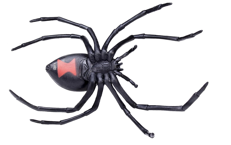 Amazon.com: Safari Ltd Hidden Kingdom – Black Widow Spider ...