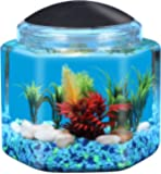 KollerCraft 1 Gallon Hexagon Betta Fish Aquarium with LED Lighting