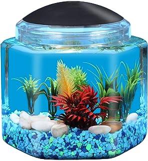 small screenshot 1 office fish. kollercraft 1 gallon hexagon betta fish aquarium with led lighting small screenshot office o