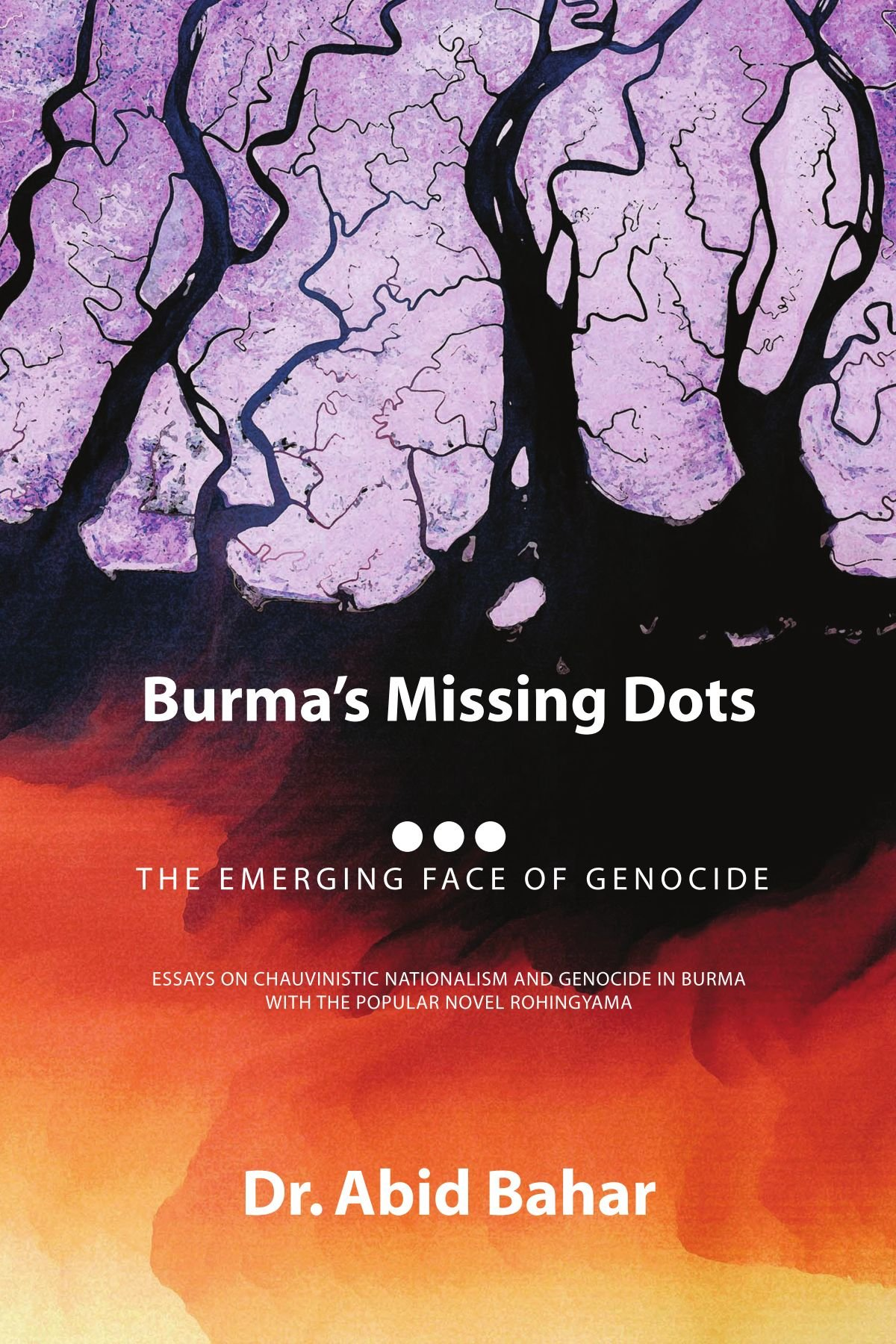 burma s missing dots the emerging face of genocide dr abid bahar burma s missing dots the emerging face of genocide dr abid bahar 9781441593788 com books