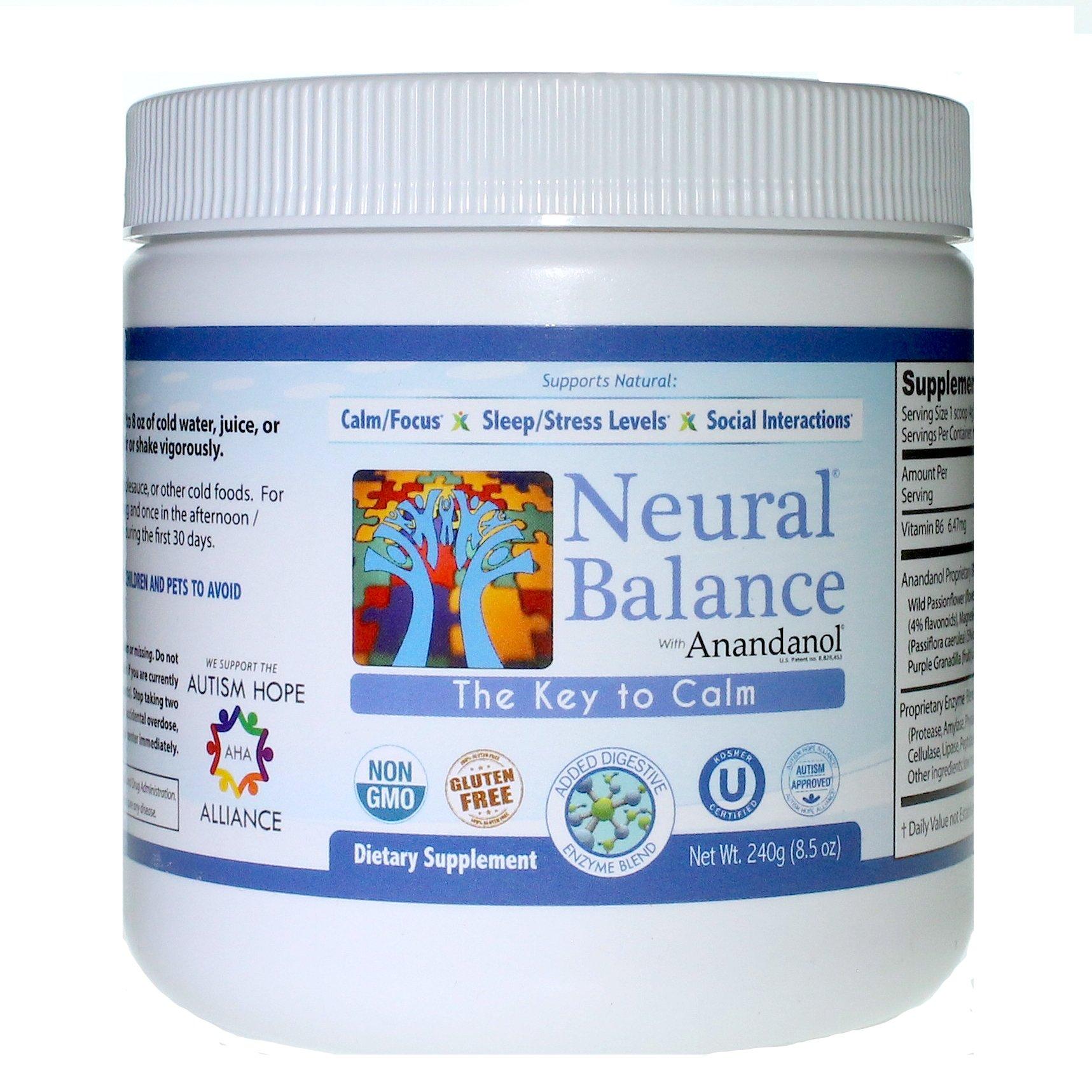 Neural Balance Natural Berry Flavor 9.5 Ounce 60 Servings