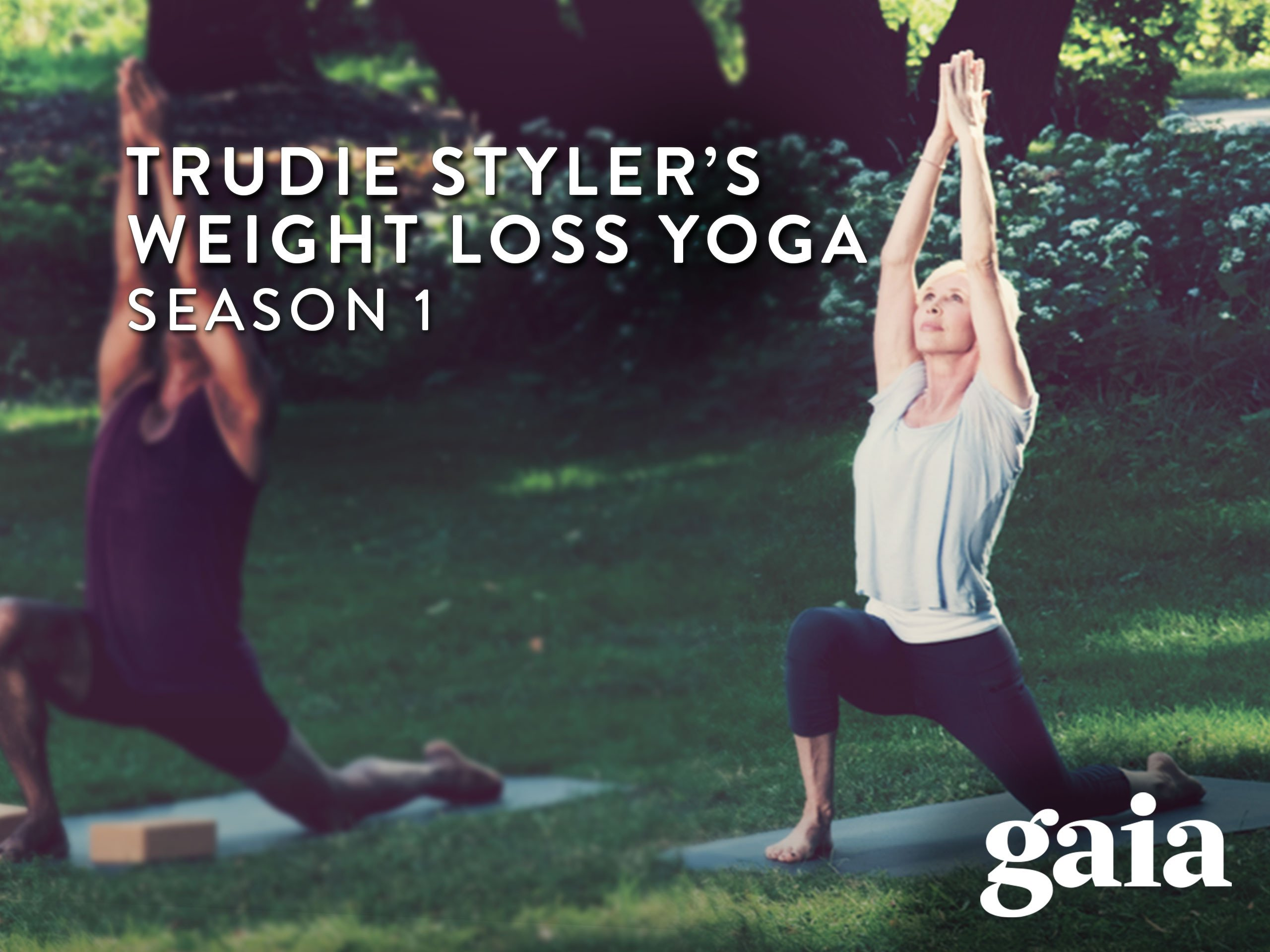 Amazon.com: Gaiam: Trudie Styler Weight Loss Yoga: Amazon ...