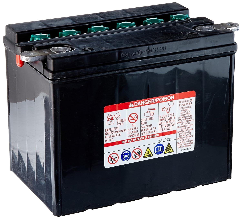 Yuasa YHD-12H Performance Battery