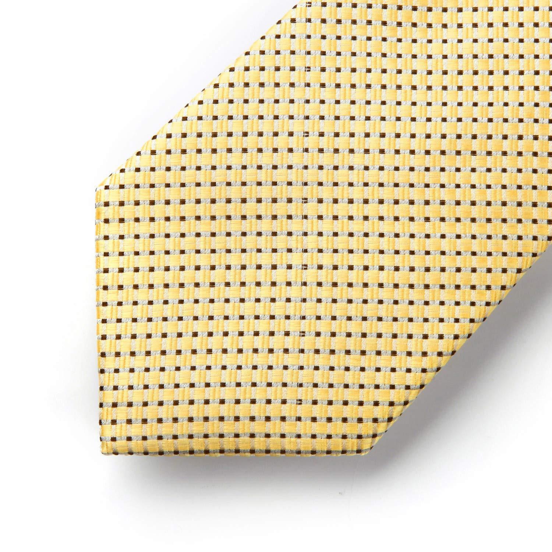 HISDERN Mens Check Plaid Striped Tie Handkerchief Wedding Silk Woven Classic Necktie /& Pocket Square Set