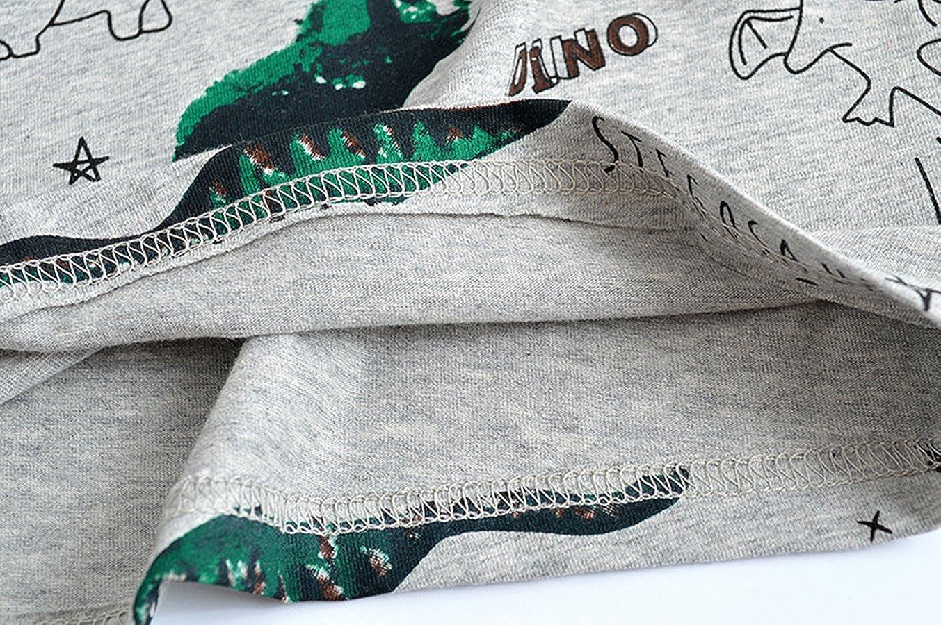 Little Hand Sweat-shirt B/éb/é Gar/çon Enfant Dinosaures Animaux Impression T Shirt Manche Longue Tops Col Rond Cartoon Chemise 2 3 4 5 6 7 8 ans