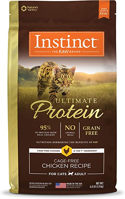 The Best Purina One Beyond Salmon Cat Food
