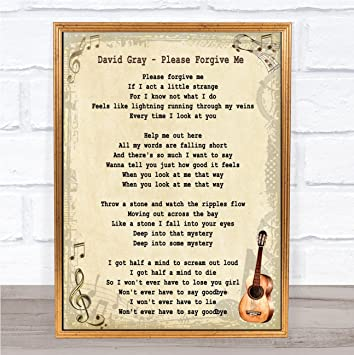 David Gray Please Forgive Me Song Lyric Vintage Quote Wall