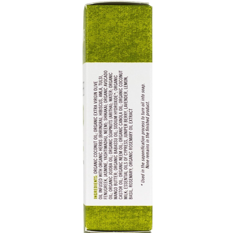 Amazon.com: Chagrin Valley Soap & Salve Organic Natural Shampoo Bar,  Ayurvedic Herb 2X Pack: Home & Kitchen