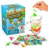Water Growing Dinosaurs - 25 Pack - Individually Wrapped Favors - Expandable Animals - Party Supplies, Goodie Bags Fillers- Great Boys and Girls - Fit as Easter Egg Fillers