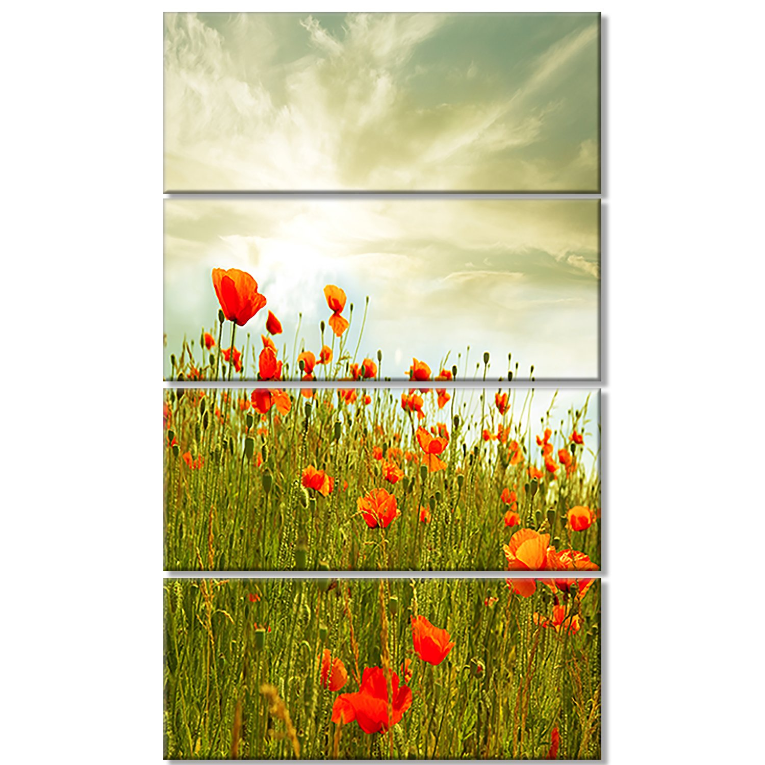 Amazon.com: Design Art Red Poppy Flowers in Green Field Floral on ...