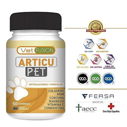 Antiinflamatorio Natural para Perros y Gatos | Colágeno + Cúrcuma + Condroitina + Magnesio + MSM ...