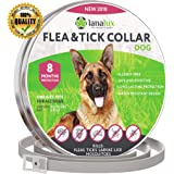 Lanalux Flea Collar - Flea Tick Prevention Dogs One Size Fits All - Flea Control 8 Months Protection & Treatment Hypoallergenic Tick Collar Insect Repellent Collar Natural Plant Extracts