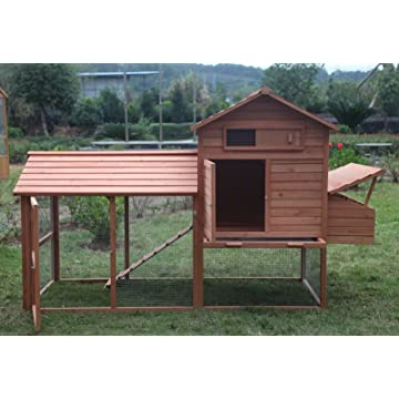 ChickenCoopOutlet Deluxe
