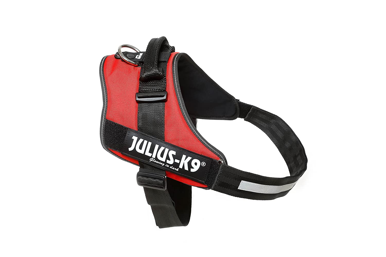 Julius-K9 IDC-Power Harness, Red, Size  4 96-138 cm 38-54.5