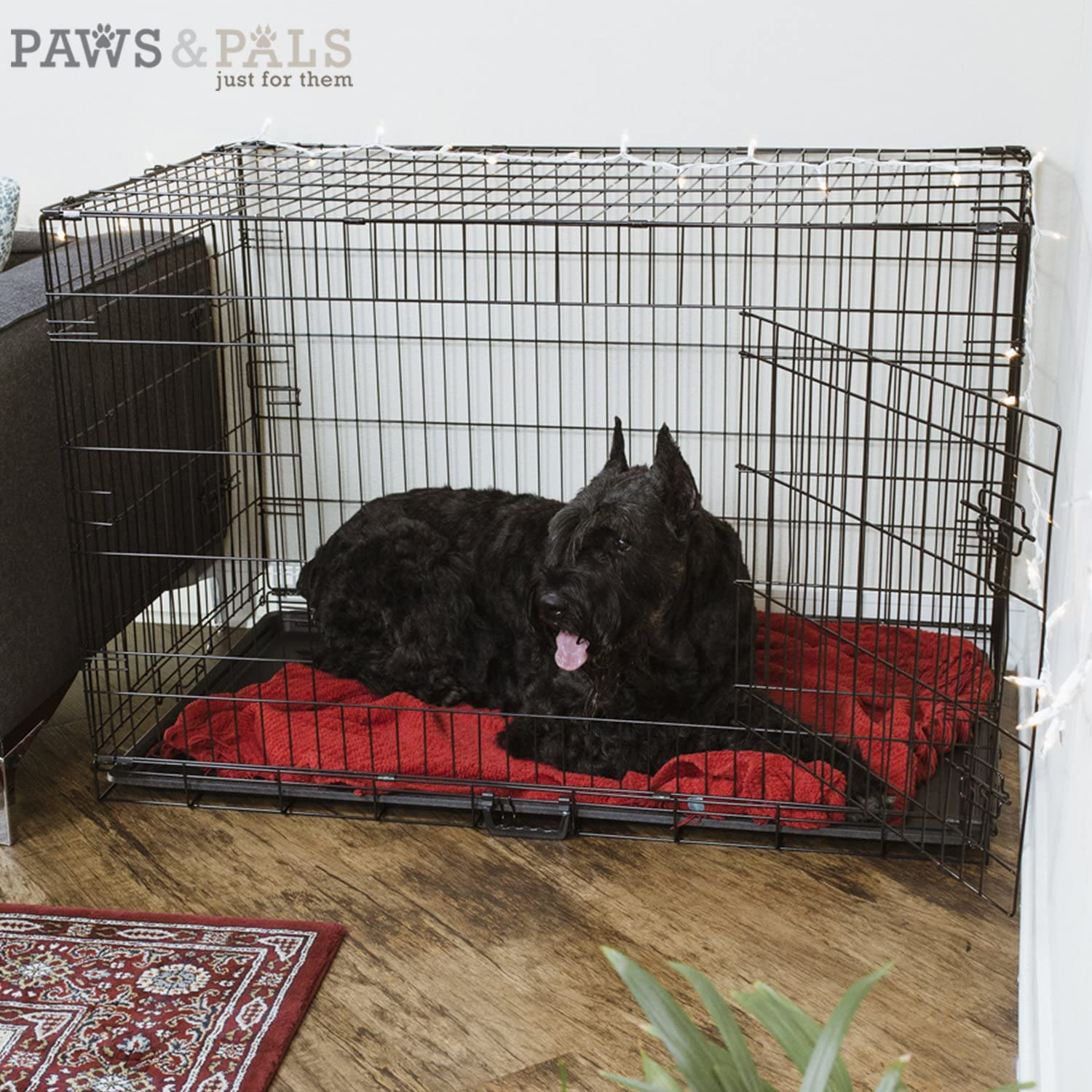 2020 Newly Designed Model Wire Pet Cage w//Divider /& Tray for Training Pet Supplies /& Accessories Paws /& Pals Dog Crate Double-Door Folding Metal