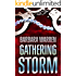 The Gathering Storm - The truth can set you free. It can also kill you. (When Darkness Falls Book 1)