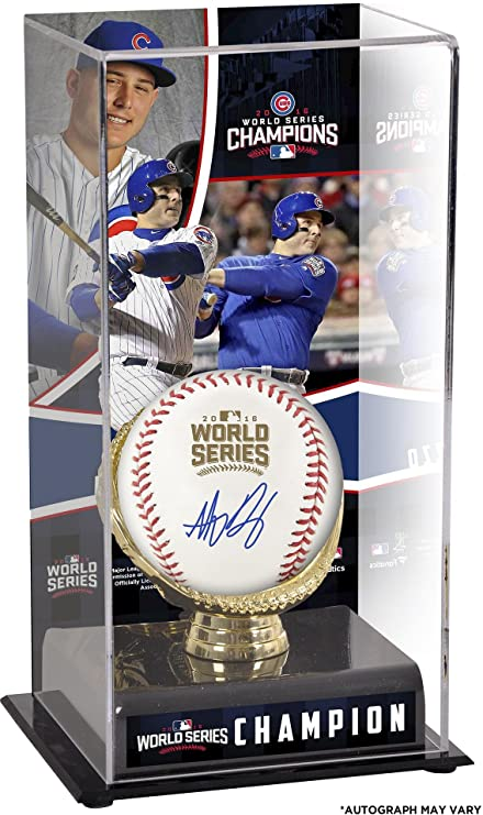 ea4e14d1 Anthony Rizzo Chicago Cubs 2016 MLB World Series Champions Autographed  World Series Logo Baseball and Baseball