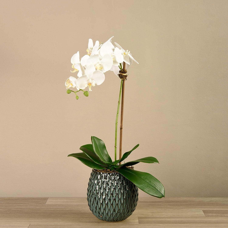 """BLOOMR Artificial Blue Texture Potted White Orchid Arrangement, Trendy Luxury Silk Fabric Decorative Indoor Faux Orchid Arrangement, 23"""" tall, 3.5 lbs, Vase 6.69"""""", blue textured pot (3825-10-1)"
