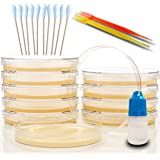 Amazing Bacteria Science Kit - Prepoured Agar Plates Kit - Science Fair Project Kit - Superior Performance - Science Project Experiment Ebook Included - Have Fun Learning Microbiology Now