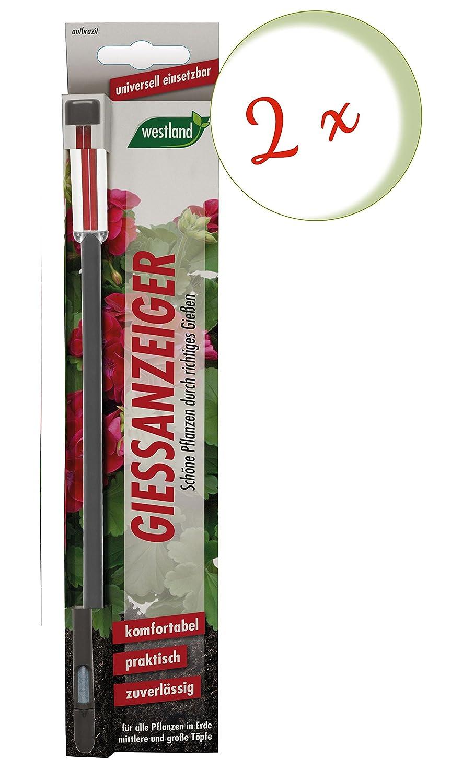 Oleander Hof® Spar Set: 2X Westland Potting Soil Based on Gießanze 26cm Anthracite + Free Oleander Yard Flyer Seramis