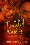 A Tangled Web: A BWWM Love Story (Dangerous Secrets Book 1)