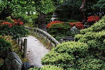 HNHOUDING Jardín Arbustos Jardín Japonés Hojas Rojas Árbolesrompecabezas De 1000 Piezas De Madera: Amazon.es: Juguetes y juegos