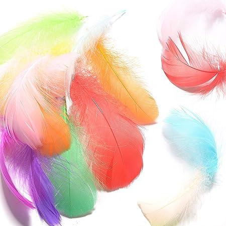 4-7 Pollici Giallo Arancio Blu MagiDeal 150 Pezzi Colorate Piume di Gallo Tinte 12-18 Cm