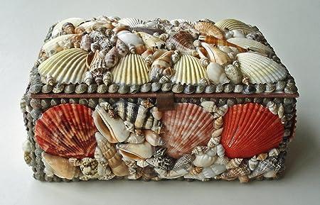 Decorative Box Natural Seashell Keepsake Box Seashell Jewelry Box