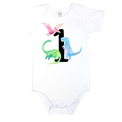 Image Unavailable Not Available For Color Olive Loves Apple Dinosaur 1st Birthday Outfit