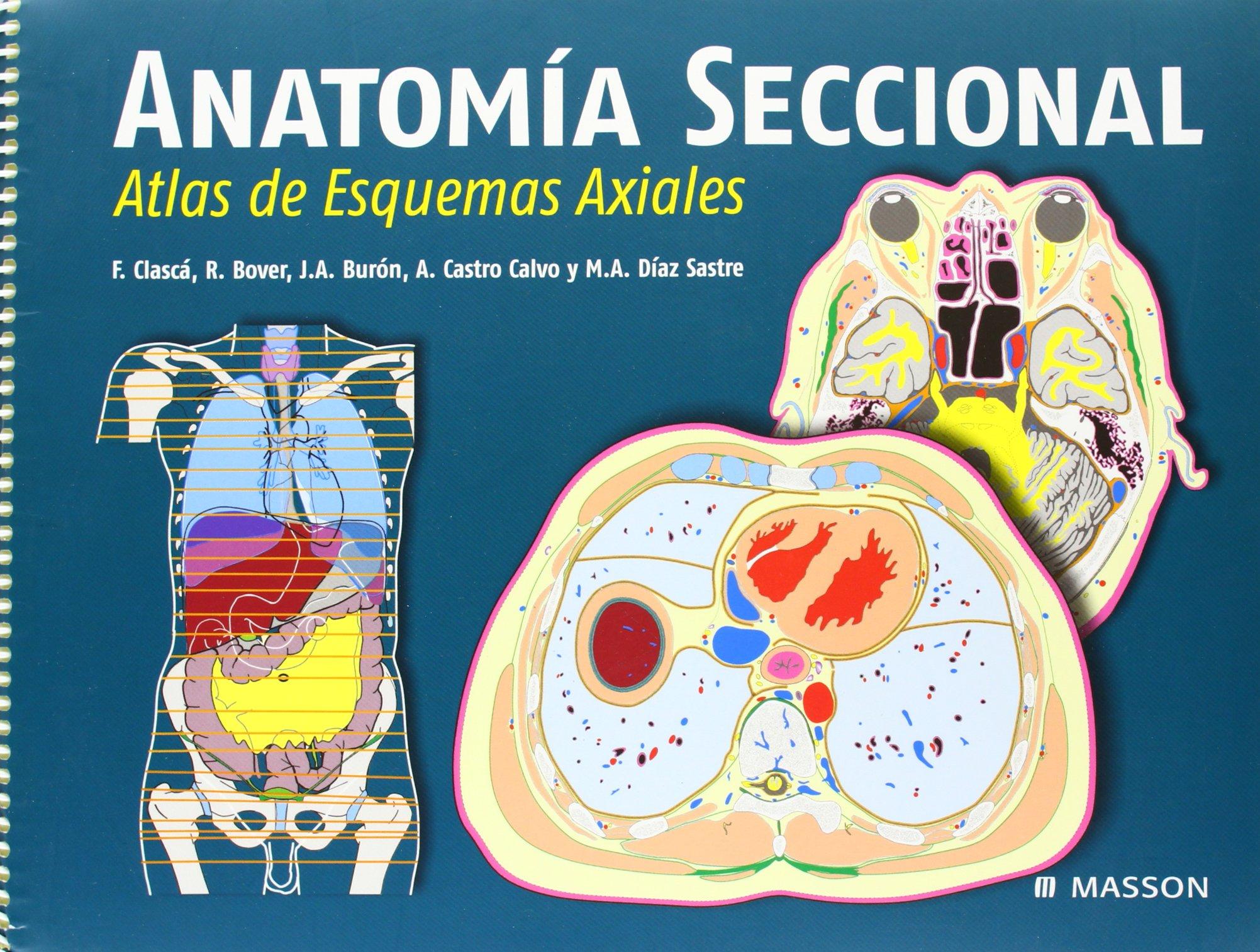 Anatomia seccional. guia de referencia: Amazon.es: Clasca, Bover ...