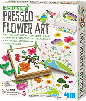 4M Green Creativity Pressed Flower Art Kit - Arts & Crafts DIY Recycle Floral Press Gift for Kids & Teens, Girls & Boys, Multi