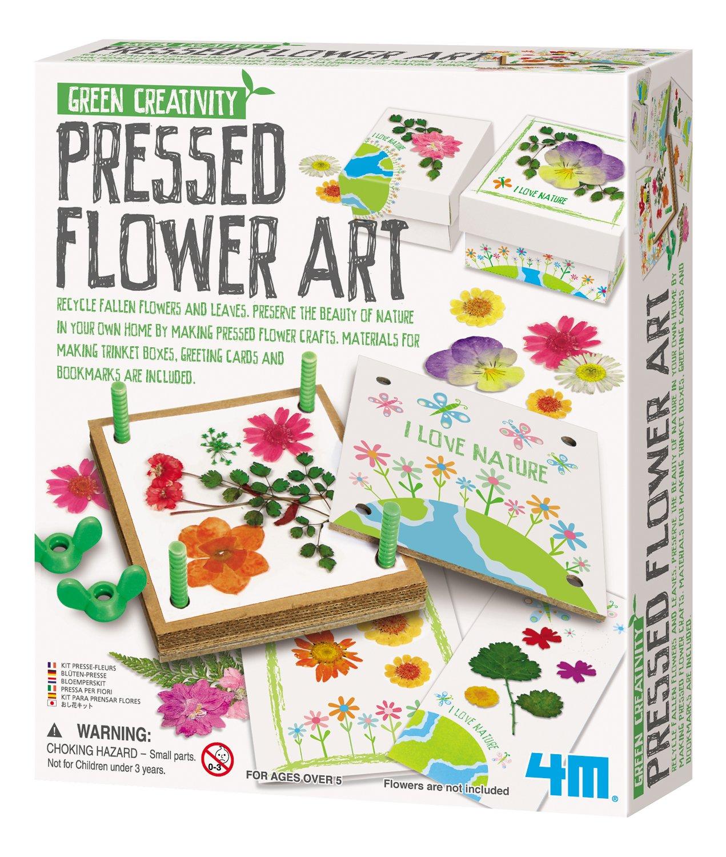 Amazon 4m Pressed Flower Art Kit Toys Games