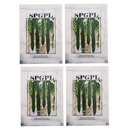 SPGPL Ridge Gourd Vegetable Seeds (Pack of 4): Amazon in