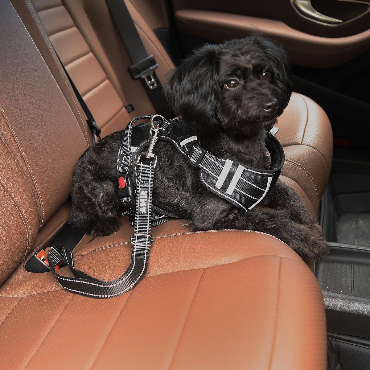 360 Grad Drehbaren Clip und Einstellbar Nylon f/ür maximalen Komfort Auto Sicherheitsgurt f/ür Hunde mit elastischer Ruckd/ämpfung 2 pack AMIR Hunde Sicherheitsgurt Passend f/ür alle Hunderassen
