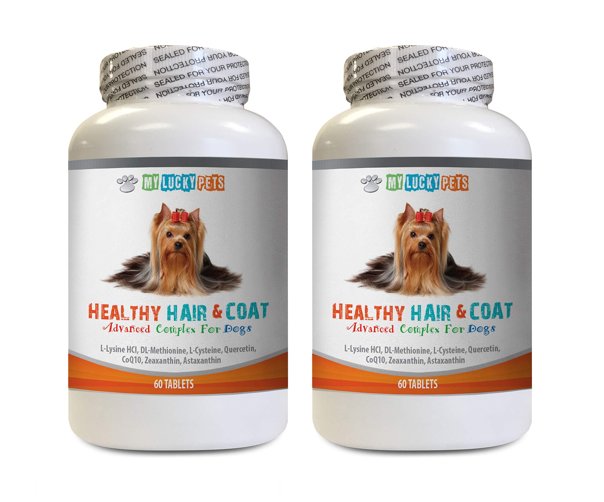 MY LUCKY PETS LLC Dog Skin Treats - Dog Healthy Hair and Coat - Shinny Coat - Skin Health - Immune Support - Nail Health - Natural Immune Support for Dogs - 120 Treats (2 Bottles) by MY LUCKY PETS LLC