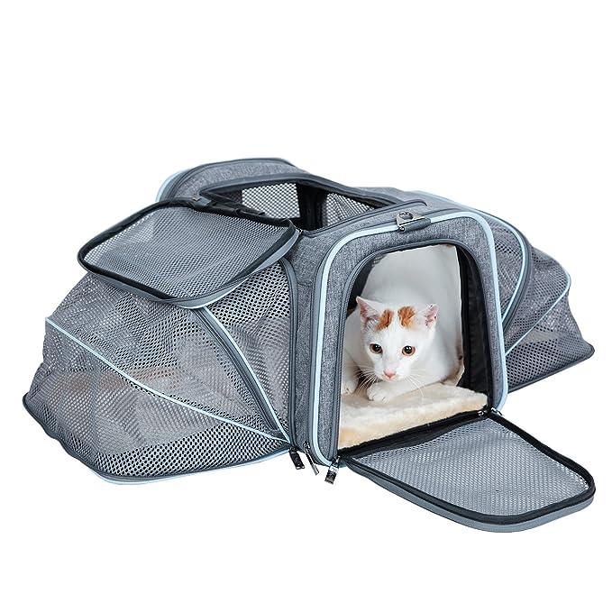 Petsfit Cat Carrier Expandable Soft Pet Carrier Most Airline ...