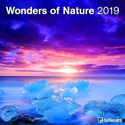 Calendario 2019 Merveille De La Naturaleza - Aurora boreal ...