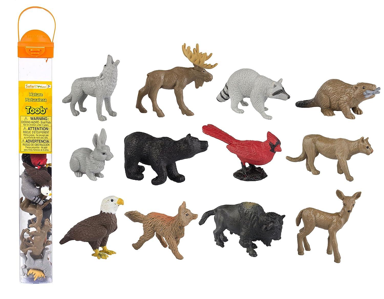 safari ltd coupon