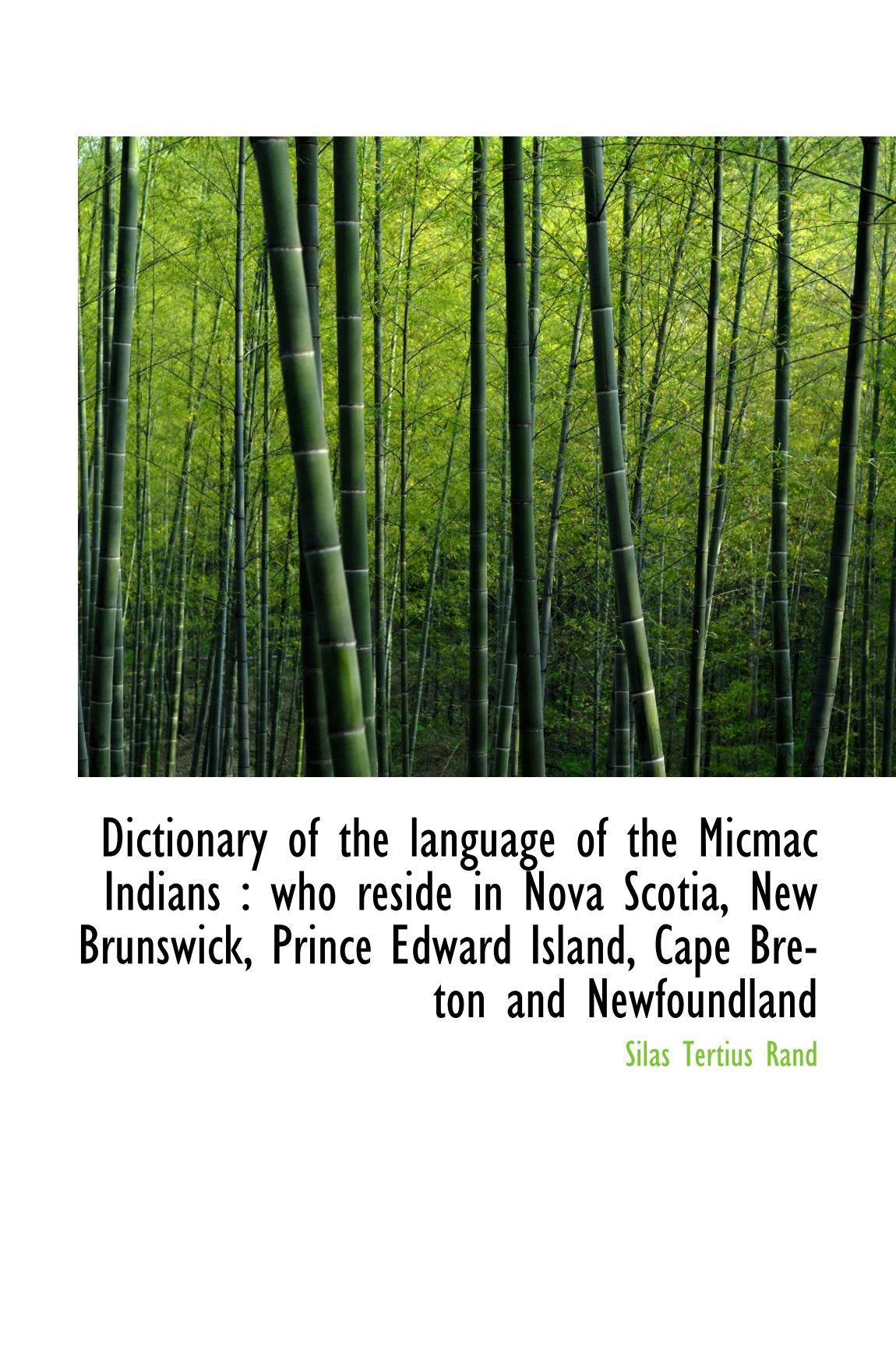 Dictionary of the language of the Micmac Indians : who reside in Nova Scotia, New Brunswick, Prince pdf