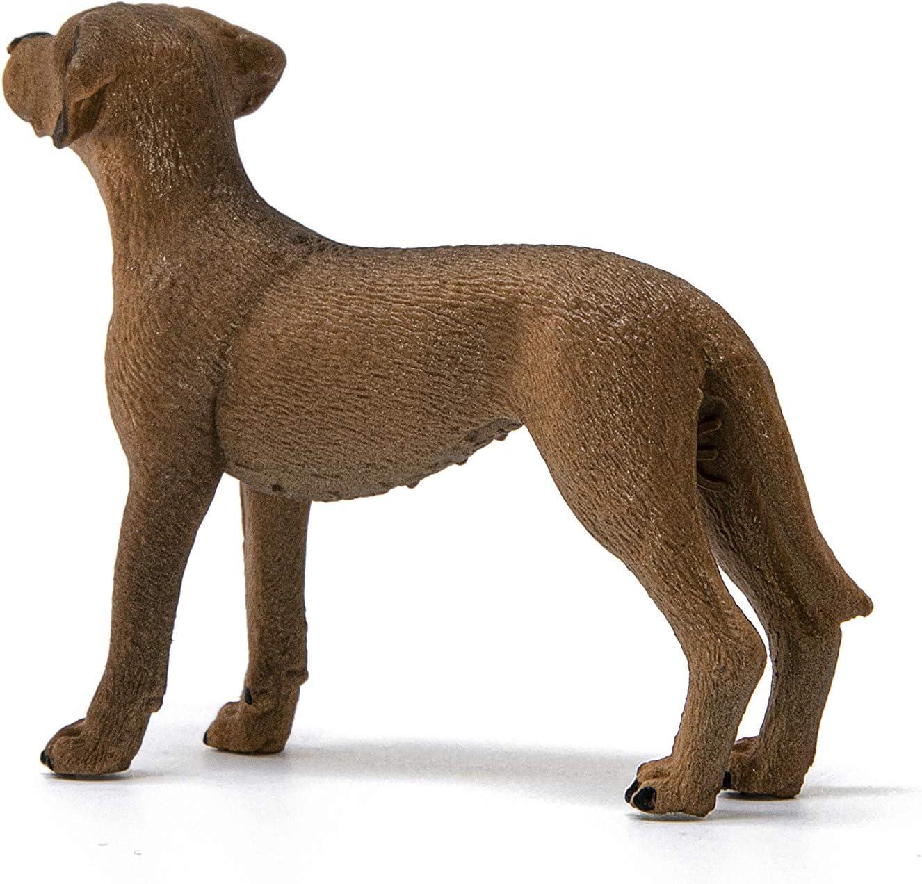 Schleich 13895 Rhodesian Ridgeback granja World perros nuevo 2020 nuevo con etiqueta