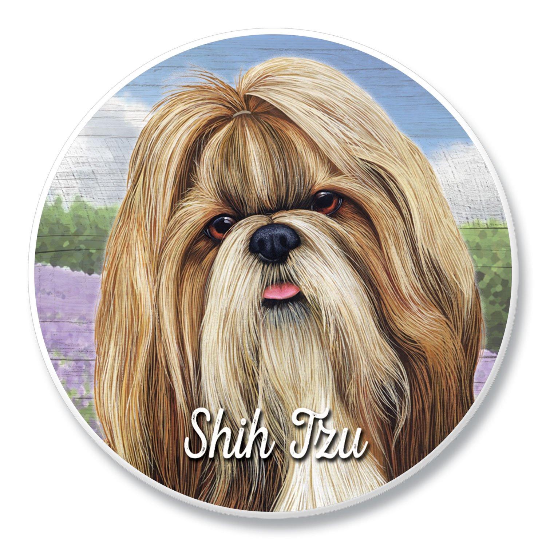 Shih Tzu decoración del hogar Bundle Pack (señal de hueso de ...