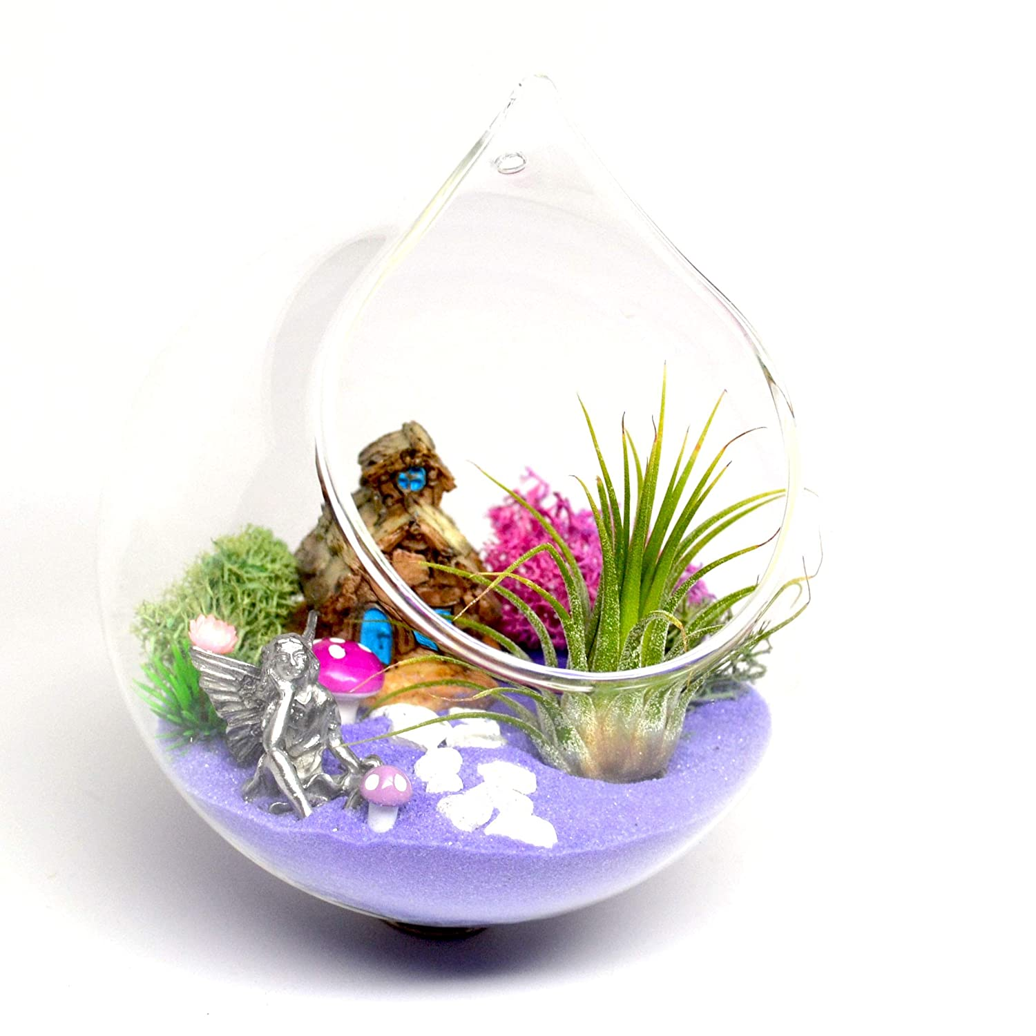 Pixie Glare Hanging Fairy Garden in a Glass Terrarium, with Pewter Fairy, Miniature Stone House, Air Plant and More Purple